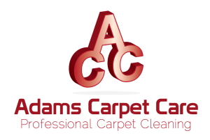 Raleigh Affordable Carpet Cleaning