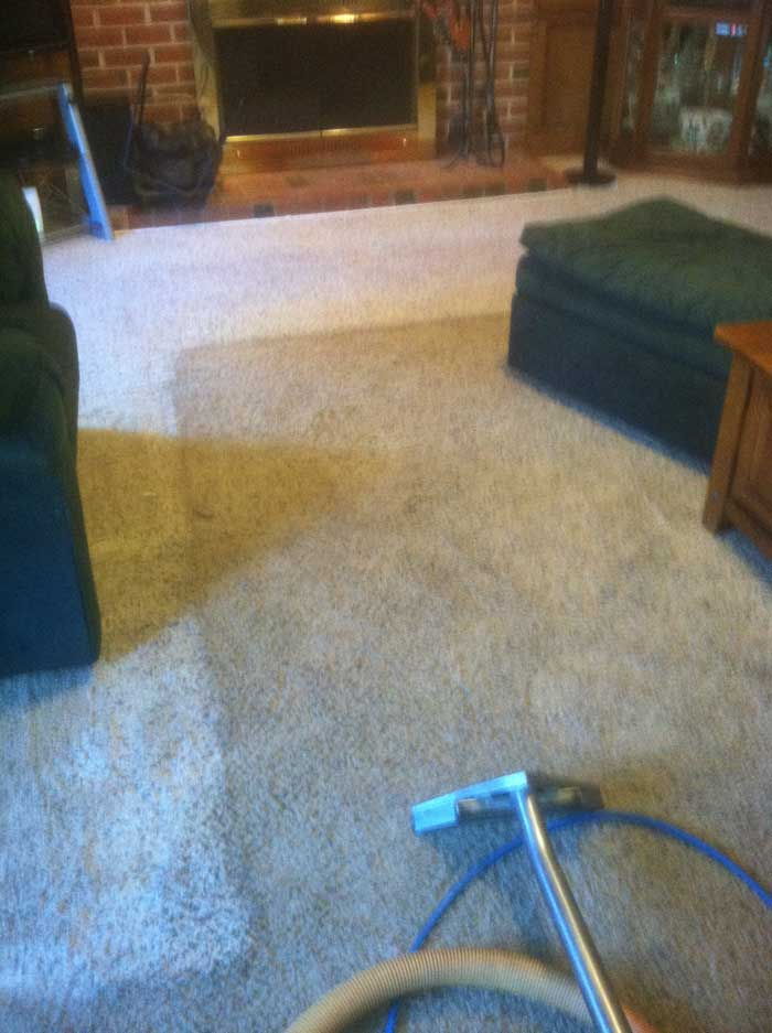Raleigh-Carpet-Cleaning